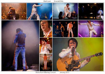 emerald elvis photo montage